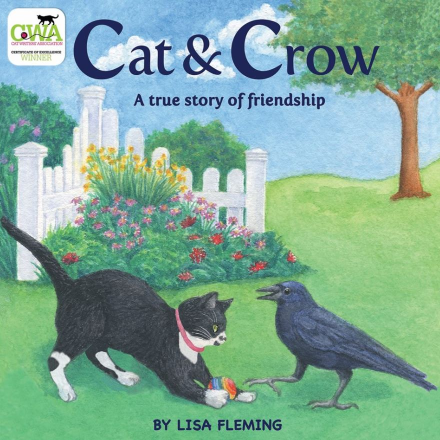 cat and crow book