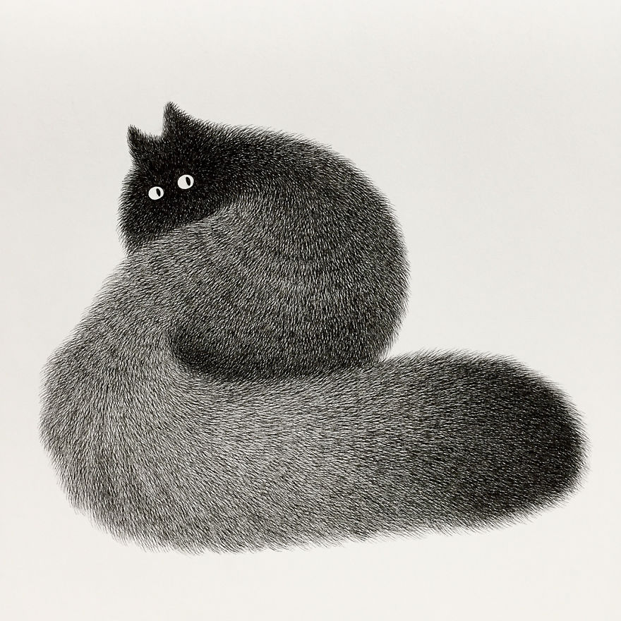 fluffy black cat ink drawing 1