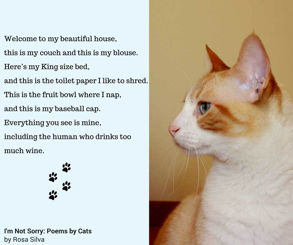 cat poems 4
