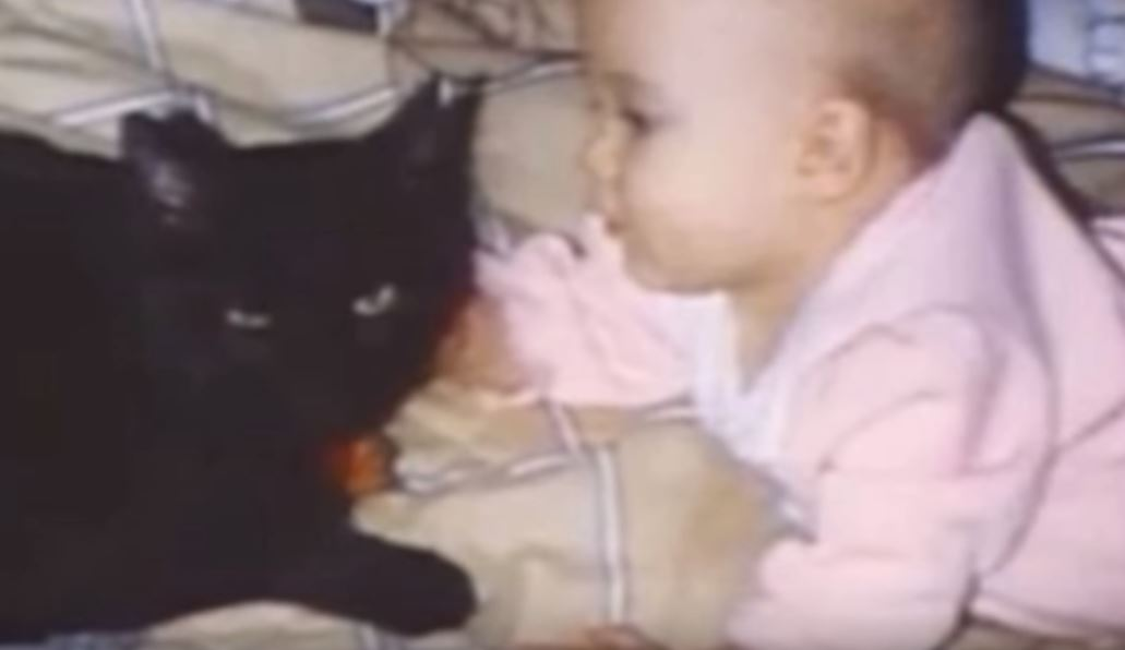 midnight the cat screams into baby monitor to save baby 3