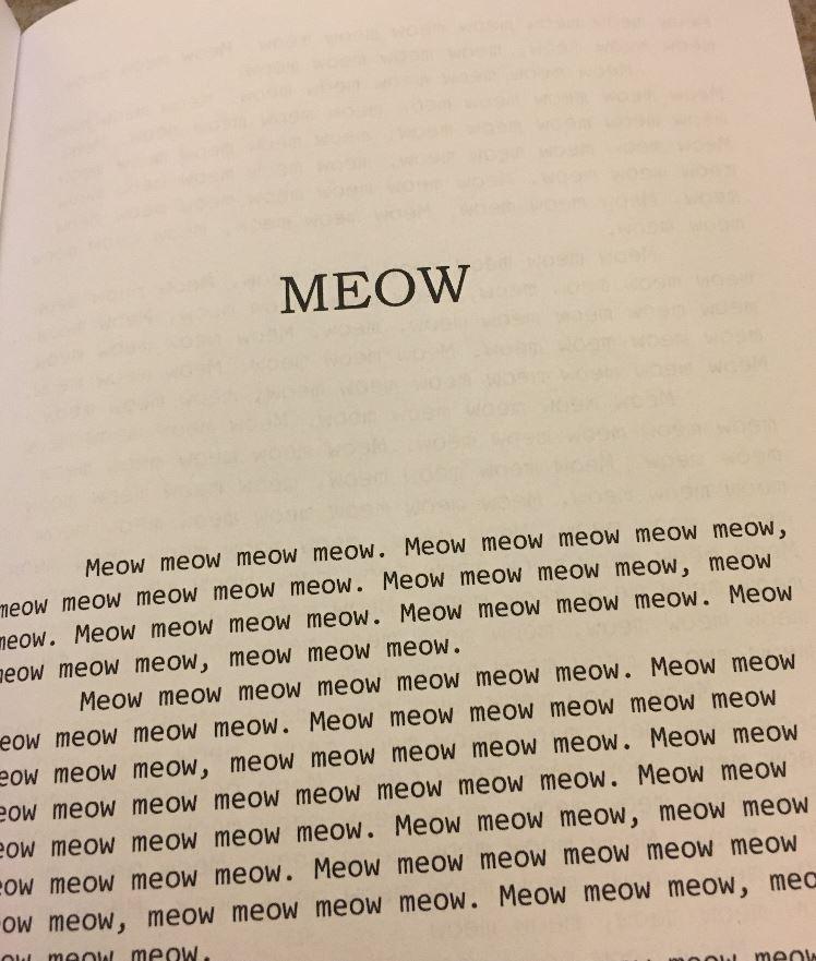 meow book 4