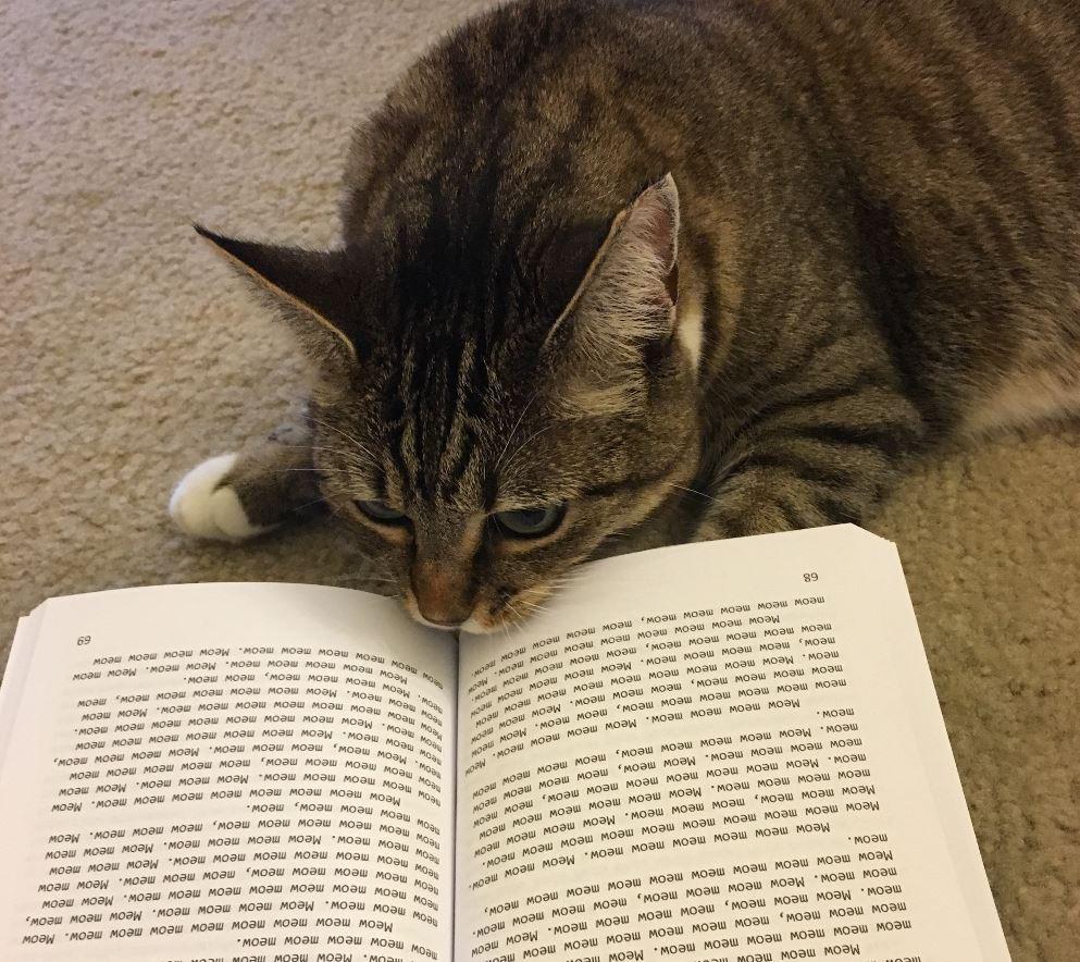 meow book 5