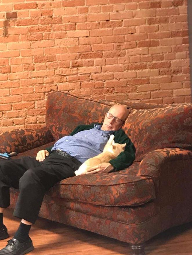 man falls asleep while brushing cats 2