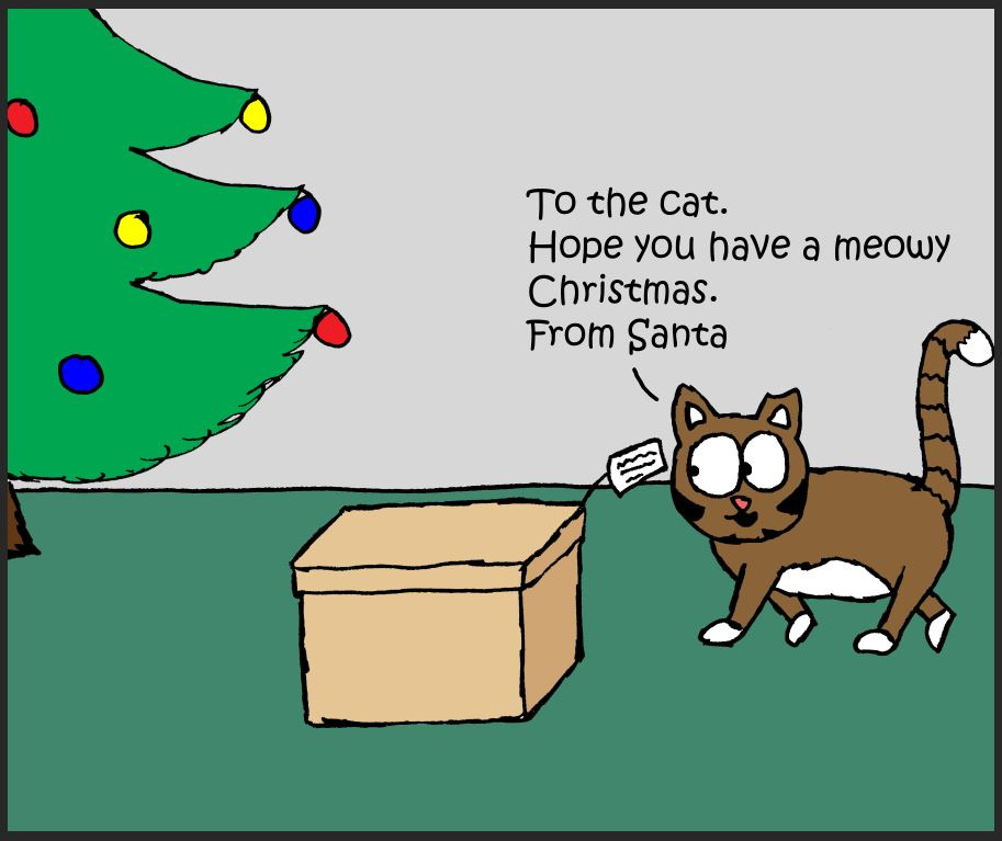 iizcat christmas box comic 1