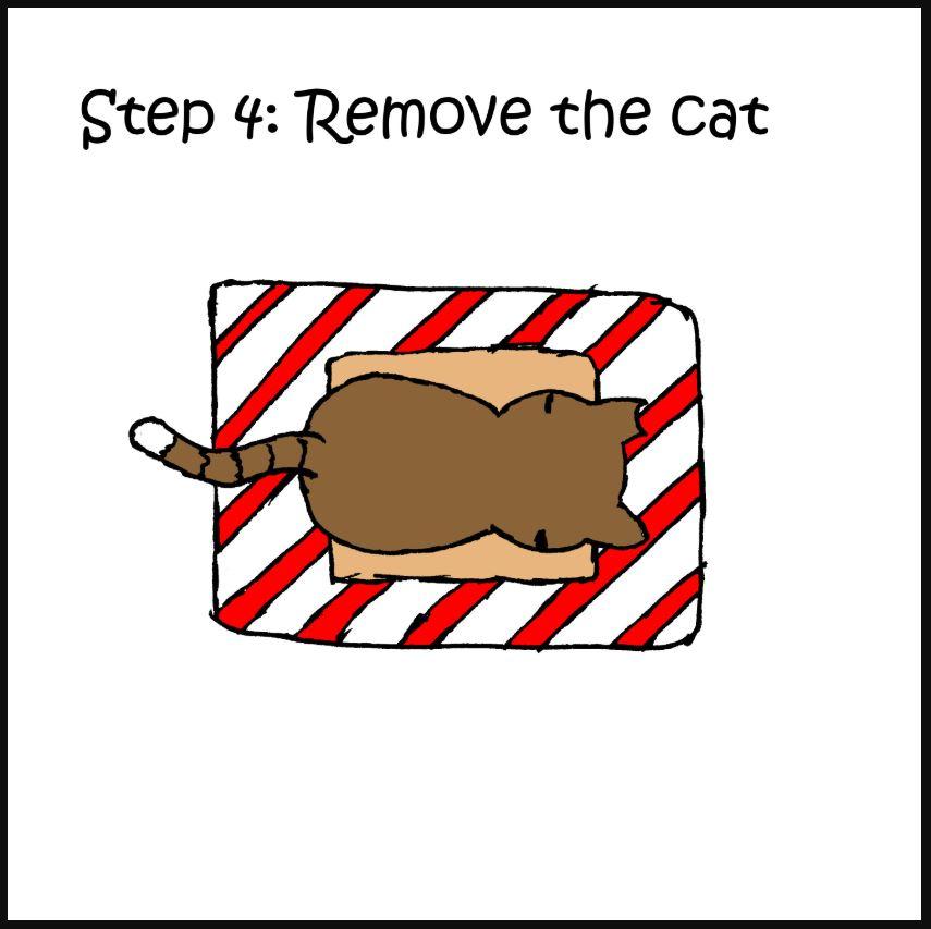 iizcat how to wrap a present cat comic 4