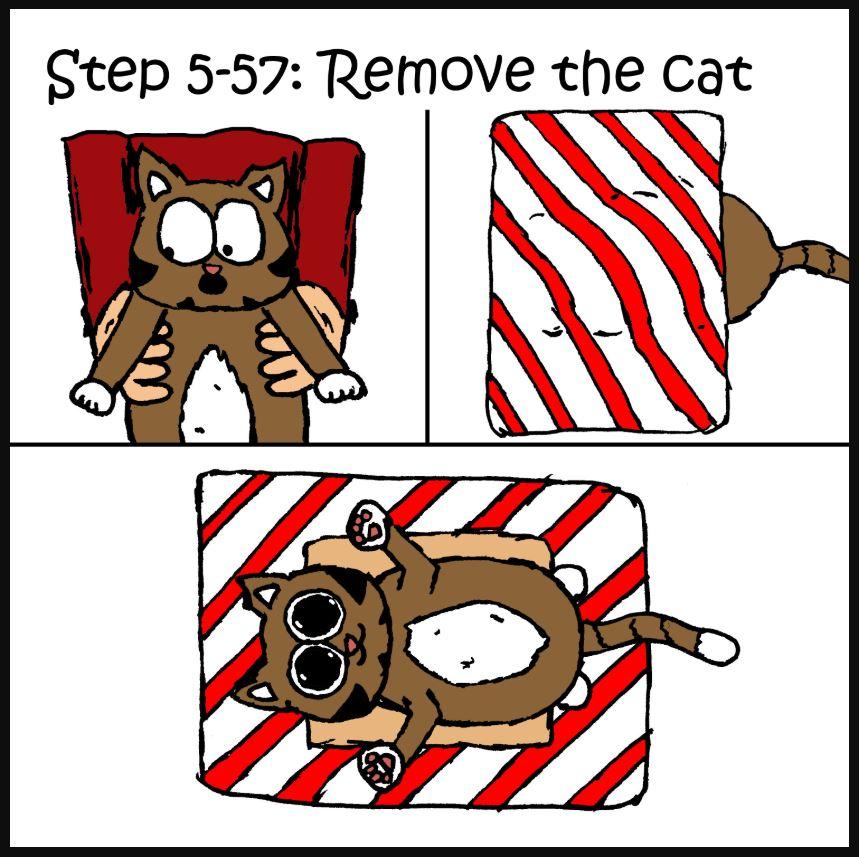 iizcat how to wrap a present cat comic 5