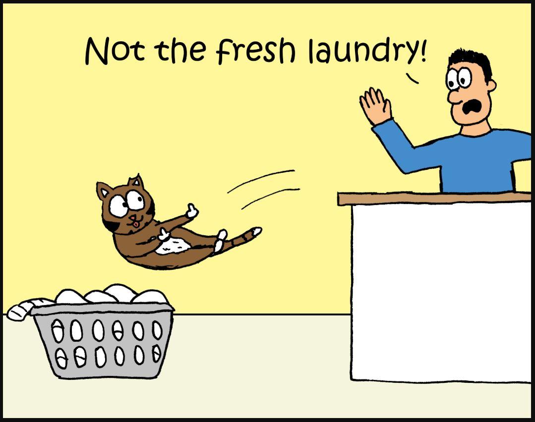 iizcat fresh laundry comic 1