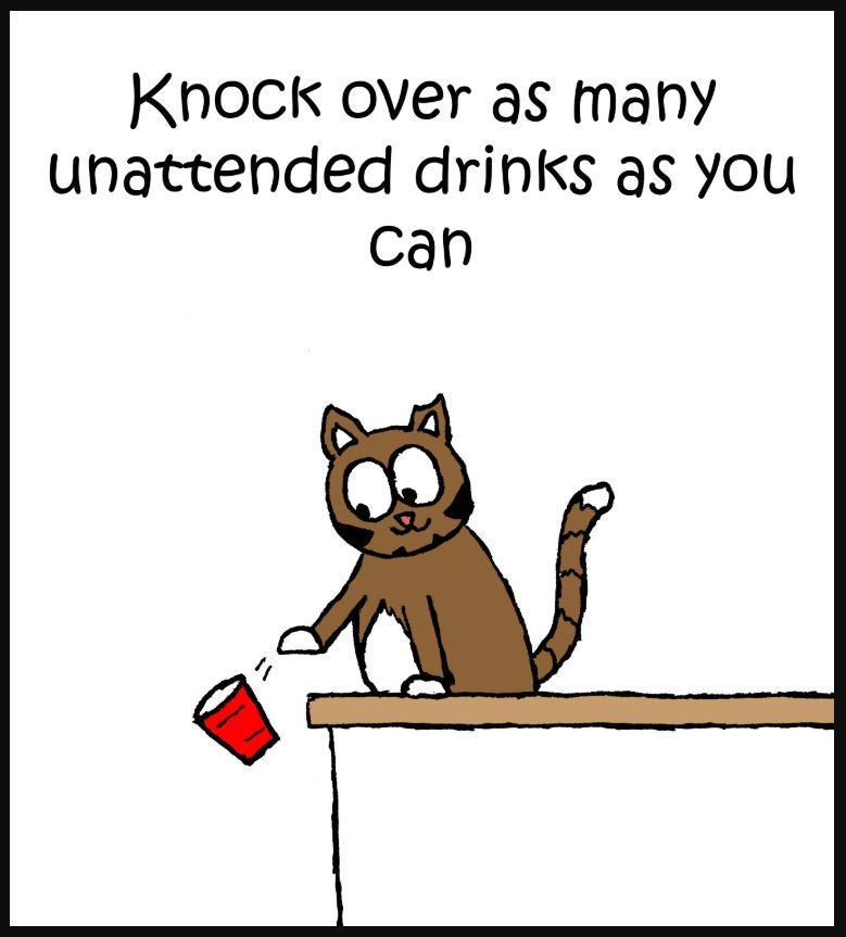 iizcat superbowl cat comic 3