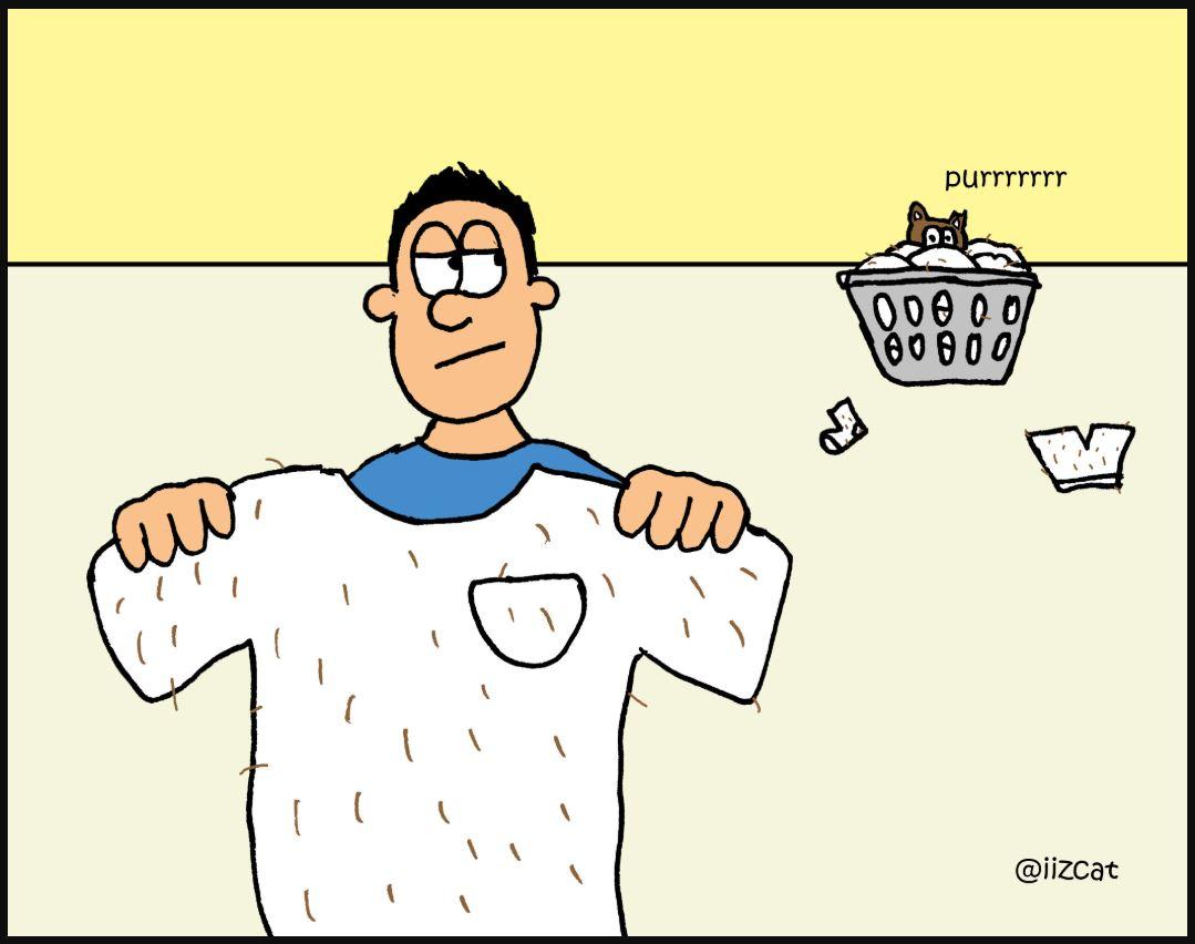 iizcat fresh laundry comic 2