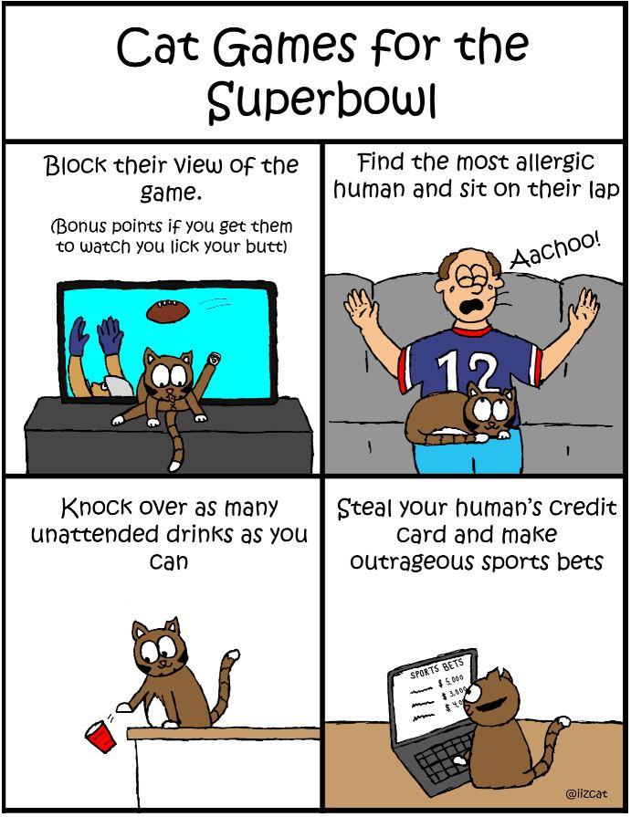 iizcat superbowl cat comic 6