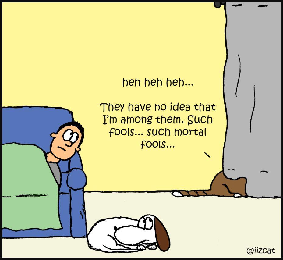 iizcat cat hiding expert comic 4