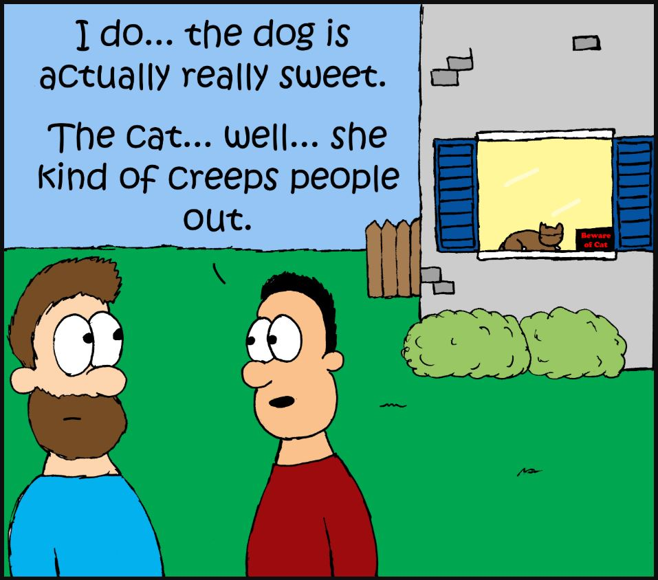 when your cat is a total freak comic 2