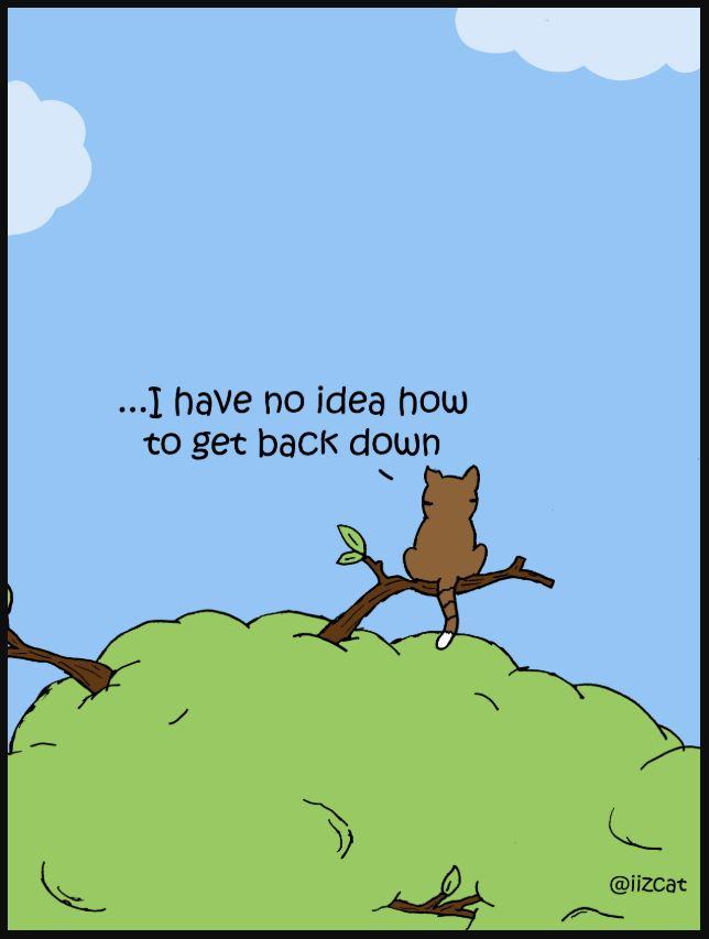 iizcat set your goals high comic 5