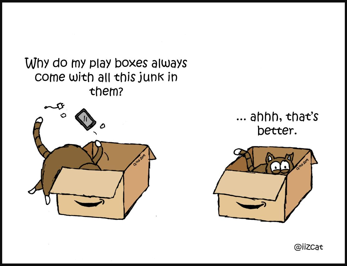 cat amazon boxes