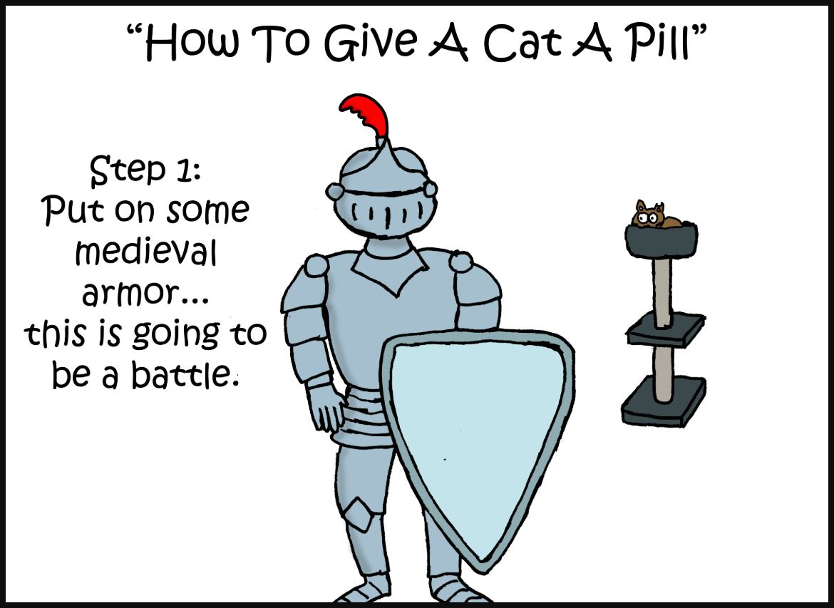 how to give a cat a pill comic 1