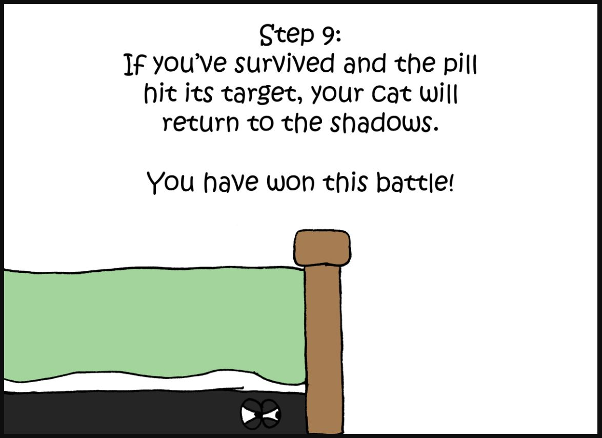 how to give a cat a pill comic 9