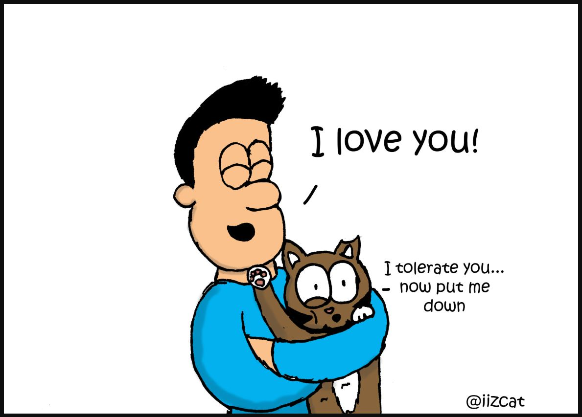 national hug your cat day iizcat comic