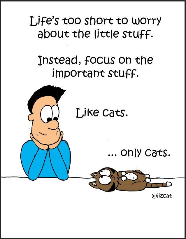 important stuff comic