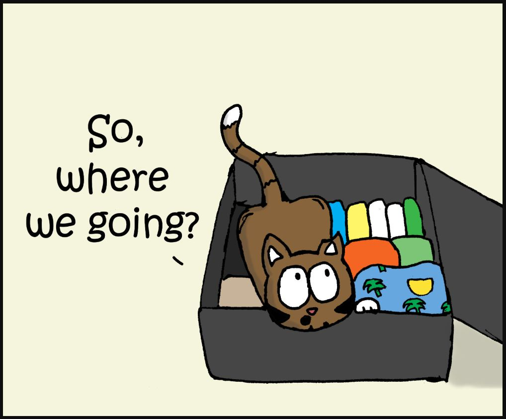going on vacation cat comic 1