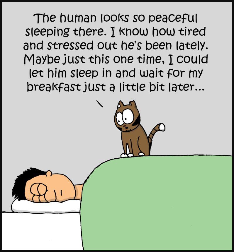 sleep in comic 2