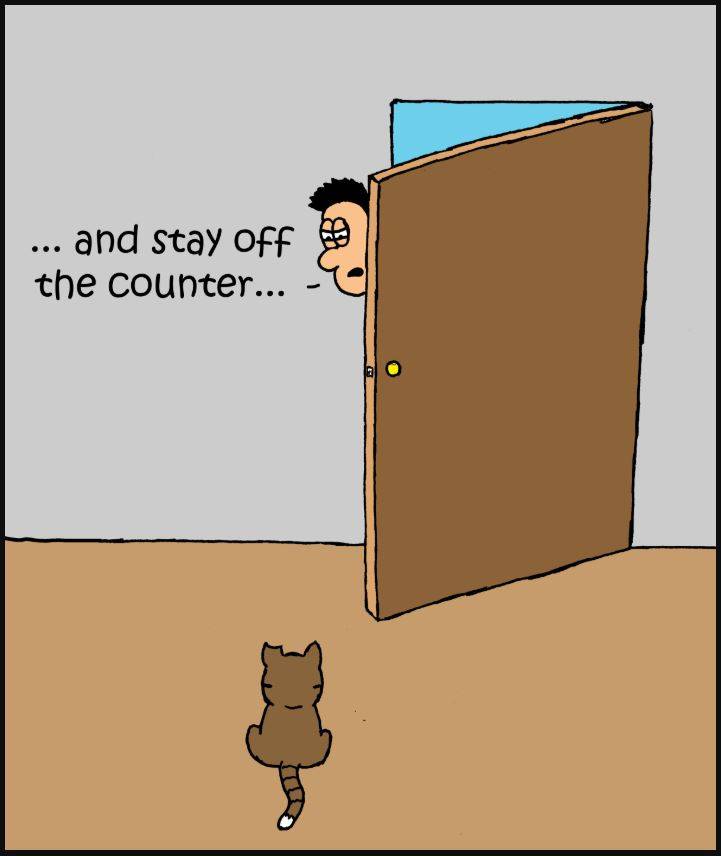 comic get off the counter 2 iizcat