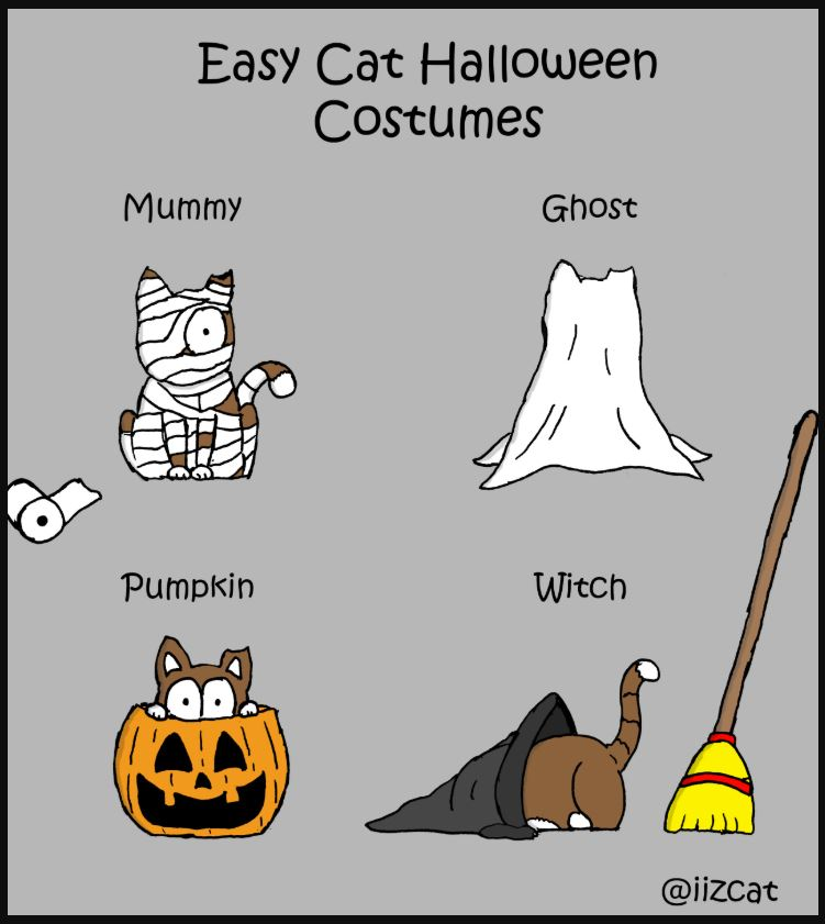easy cat halloween costumes