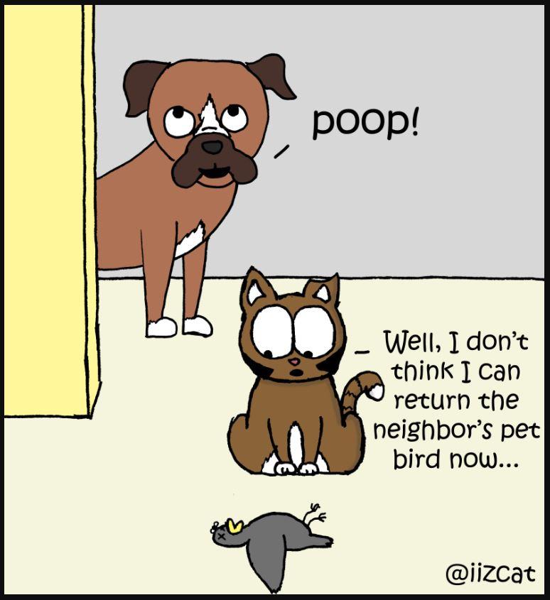 thanksgiving poop 4