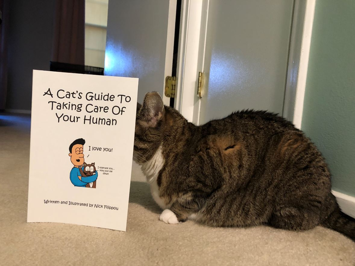 cats guide
