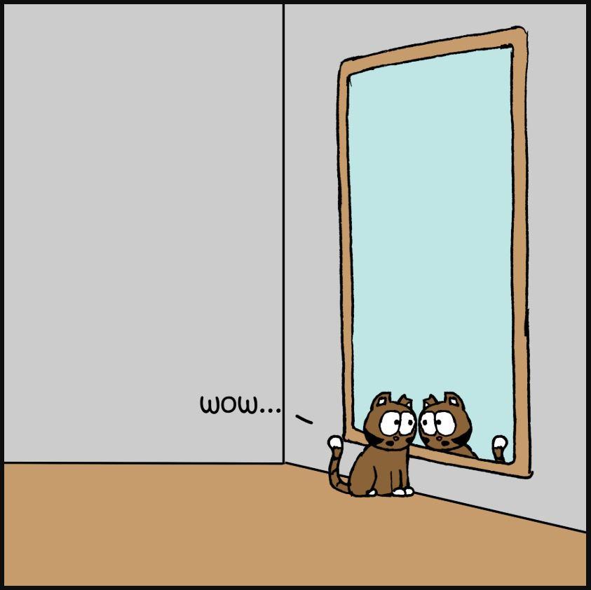 mirror comic 3