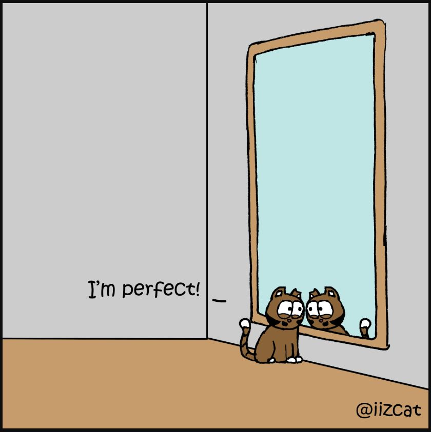 mirror comic 4