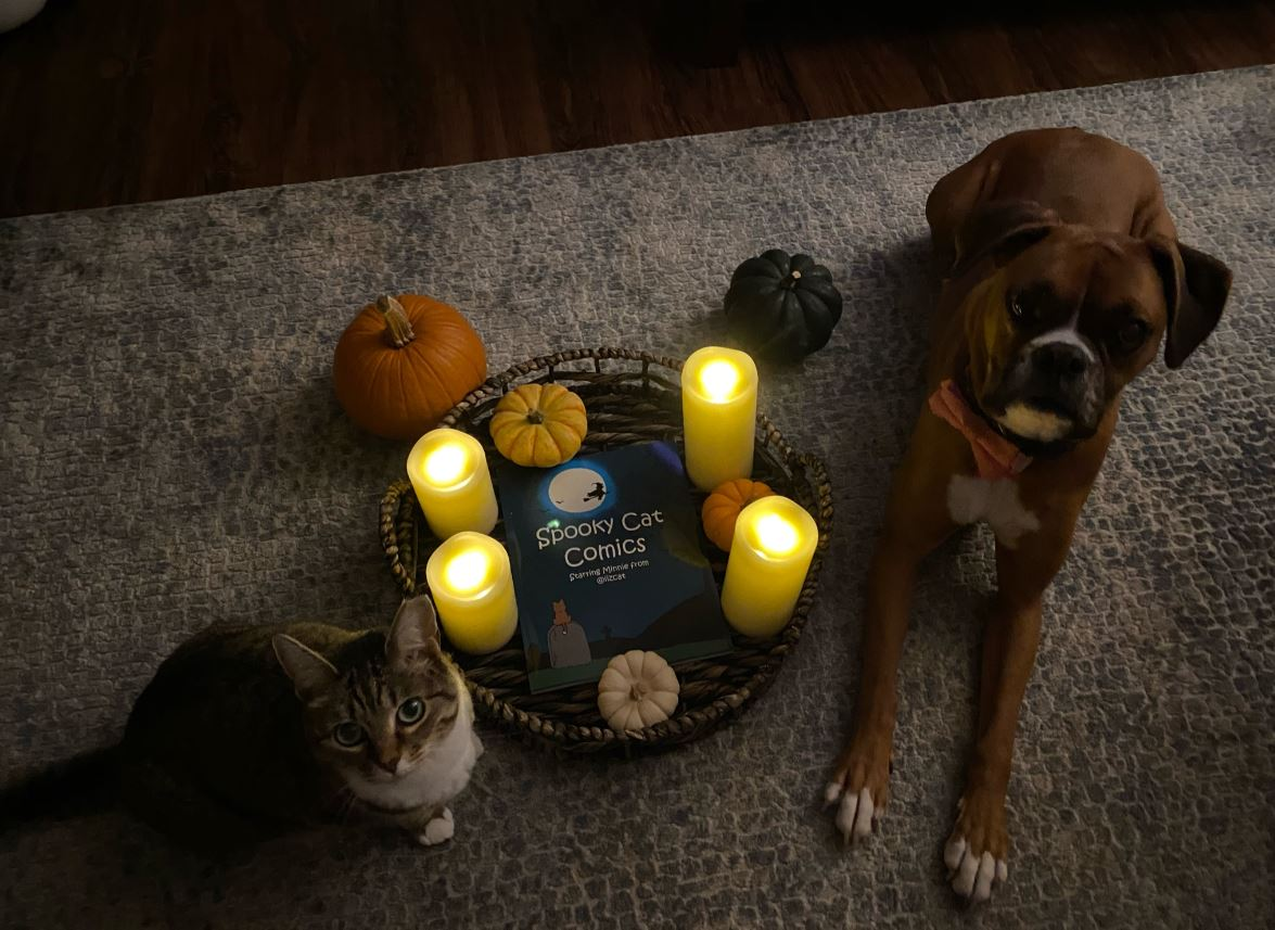 spooky cat comics minnie and dany