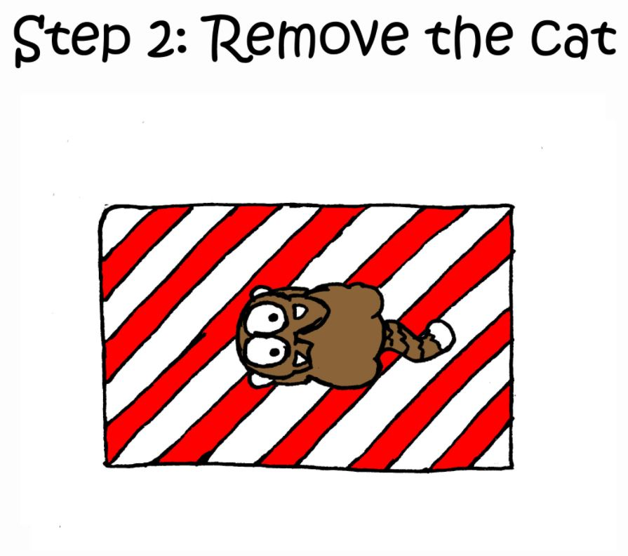 how to wrap a present with a cat step 2