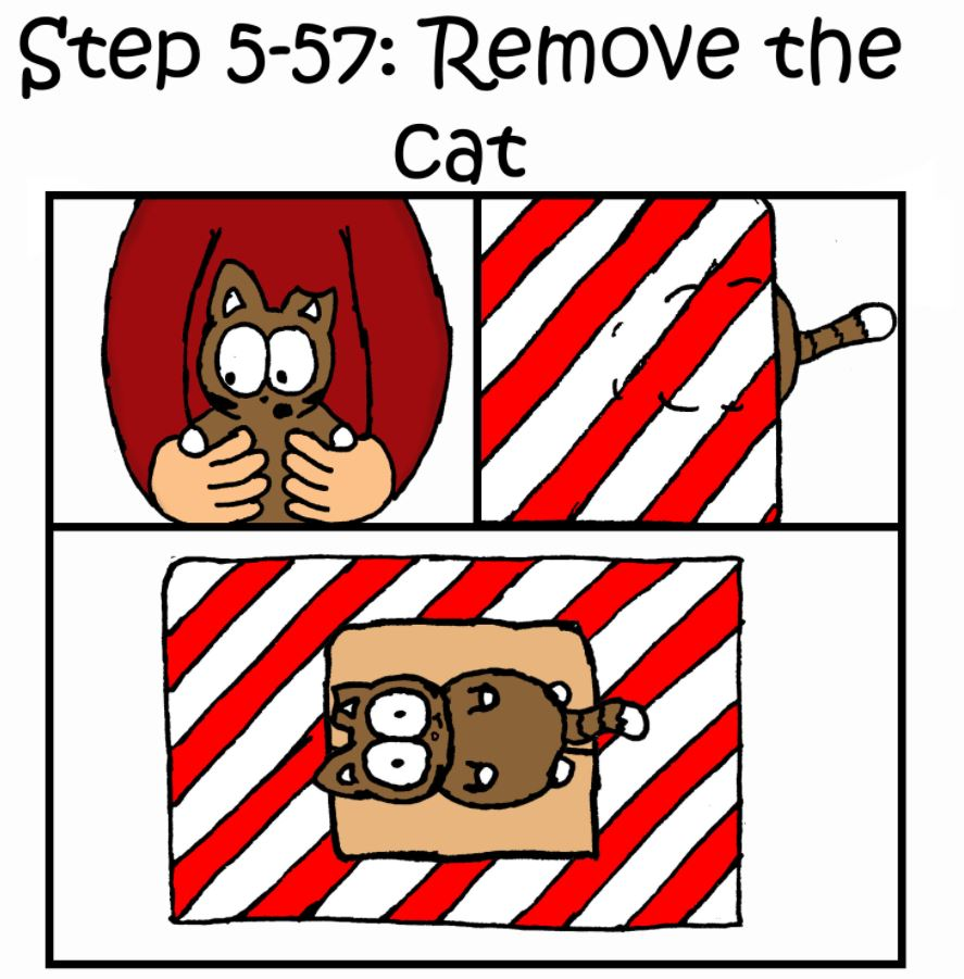 how to wrap a present when you have a cat step 5