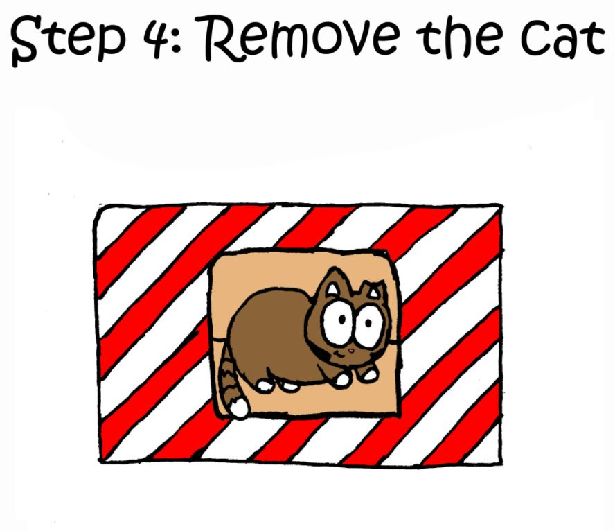 how to wrap a present when you have a cat step 4